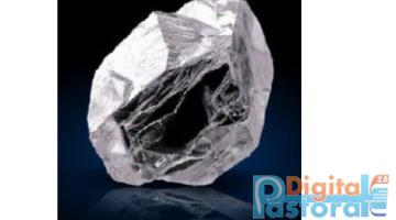 Pastorale Digitale Diamante